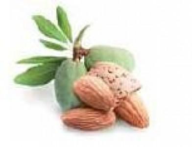 HWB Nussfrucht GmbH Husum Orzechy,  przetwarzanie żywności,  pomoce do pieczenia,  solone krakersy i przekąski